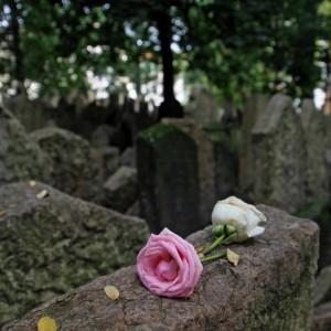 pogrzeby warszawa ochota
