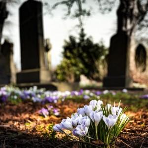 zakład pogrzebowy sosnowiec